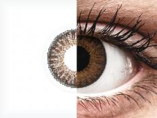 TopVue Color daily - Brown - ar dioptriju (10lēcas)
