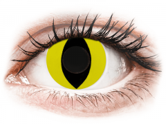CRAZY LENS - Cat Eye Yellow - dienas bez dioptrijas (2 lēcas)